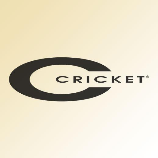 chrysalis rosemont cricket salon